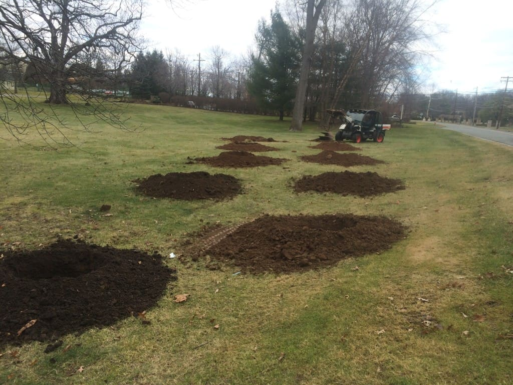Tree Planting at the Brooklake Country Club in Florham Park NJ